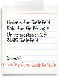 Bielefeld University, Evolutionary Biology, Morgenbreede 45, 33615 Bielefeld, Germany