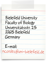 Bielefeld University, Faculty of Biology, Universitätsstr. 25, 33615 Bielefeld, Germany