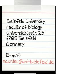Bielefeld University, Faculty of Biology, Universitätsstr. 25, 33615 Bielefeld, Germany